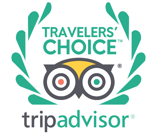 traveler's choice award